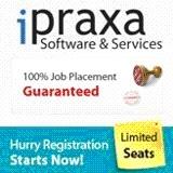 iPraxa Company Logo