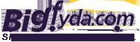 Bigfyda Logo