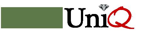 Give Unique Logo