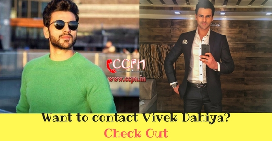 Contact Details of TV Actor Vivek Dahiya Image