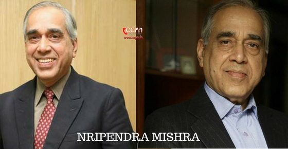 How to contact Nripendra Mishra?
