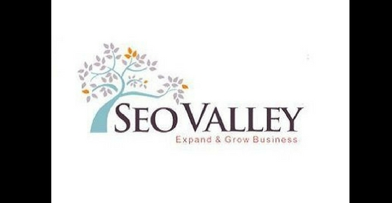 How to contact SEO Company SeoValley ?