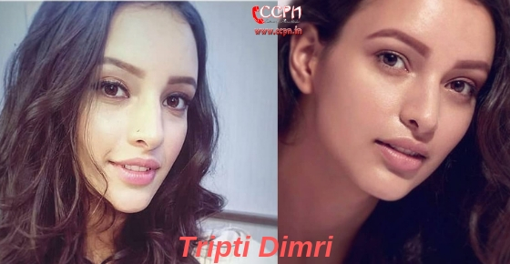 How to contact actress Tripti Dimri?