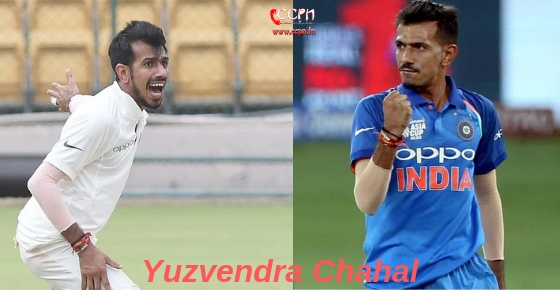 How to contact Cricketer Yuzvendra Chahal?