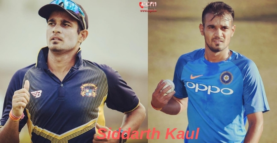 How to contact Cricketer Siddarth Kaul?