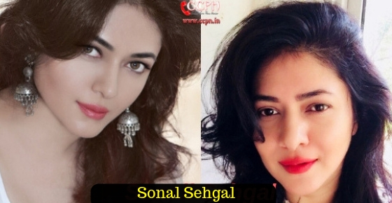 How to contact Actress Sonal Sehgal?