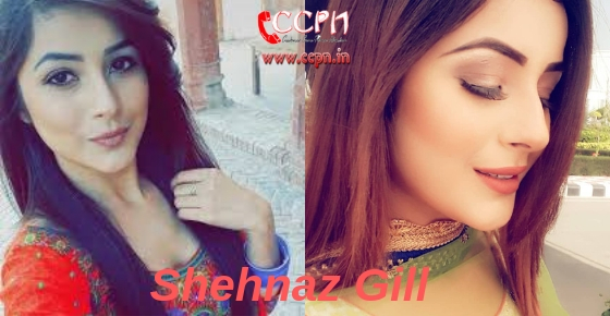 How to contact actress Shehnaz Gill?