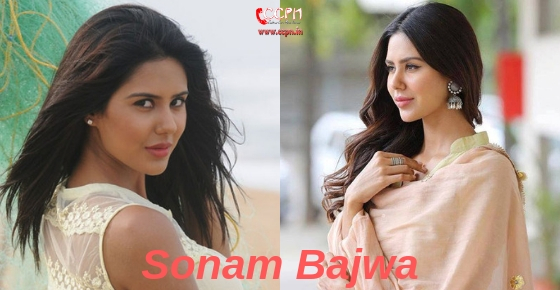 How to contact Model and Actress Sonam Bajwa?