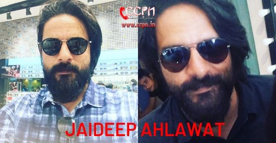 How to Contact Jaideep Ahlawat