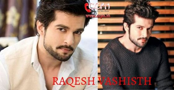 How to Contact Raqesh Vashisth