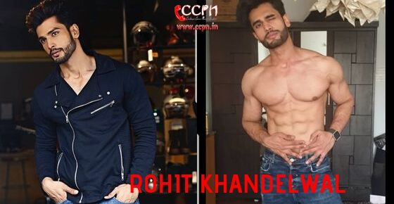 How to Contact Rohit Khandelwal