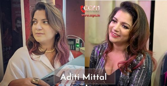 how to contact aditi mittal?