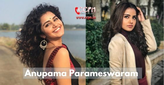 how to contact Anupama Parameswaran?