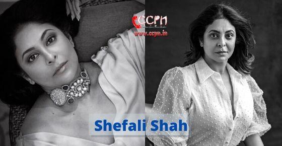 how to contact Shefali Shah?