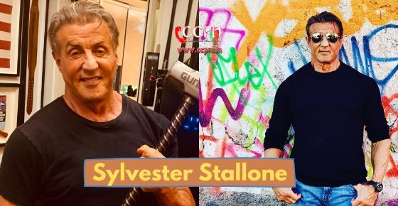 how to contact Sylvester Stallone?