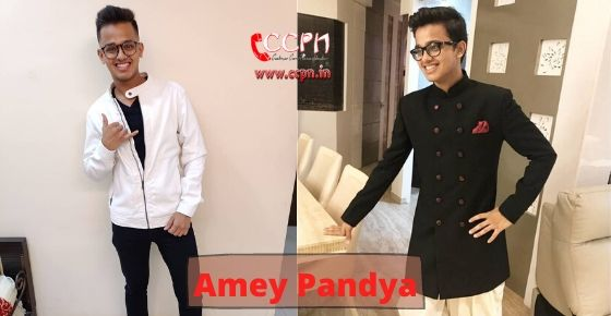 How to contact Amey Pandya?