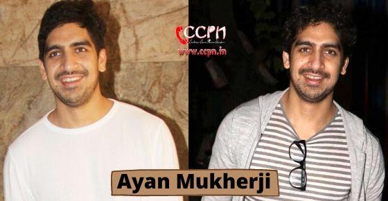 How to contact Ayan Mukherji?