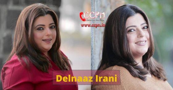 How to contact Delnaaz Irani?