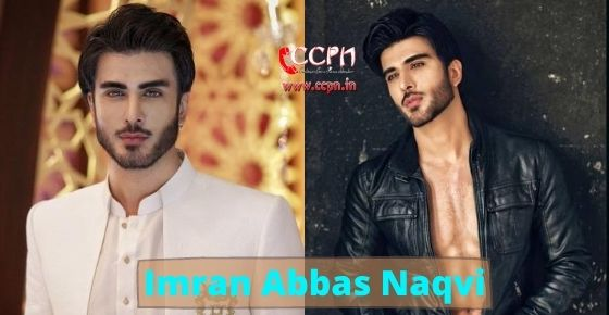How to contact Imran Abbas Naqvi?