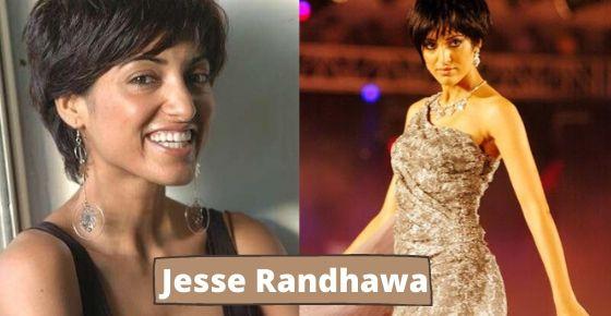 How to contact Jesse Randhawa?