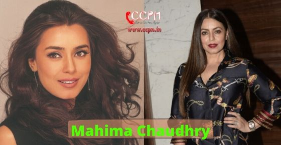How to contact Mahima Chaudhry?