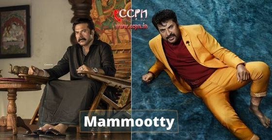 How to contact Mammootty?