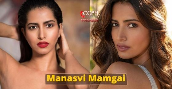 How to contact Manasvi Mamgai?