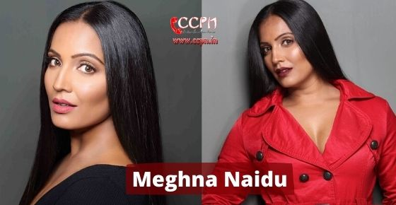 How to contact Meghna Naidu?