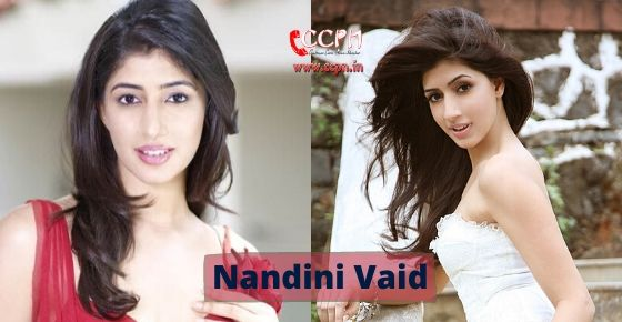 How to contact Nandini Vaid?