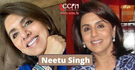 How to contact Neetu Singh?