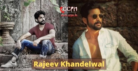 How to contact Rajeev Khandelwal?