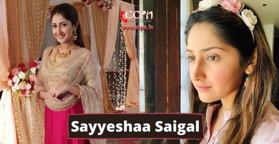 How to contact Sayyeshaa Saigal?
