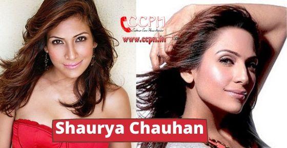 How to Contact Shaurya Chauhan?