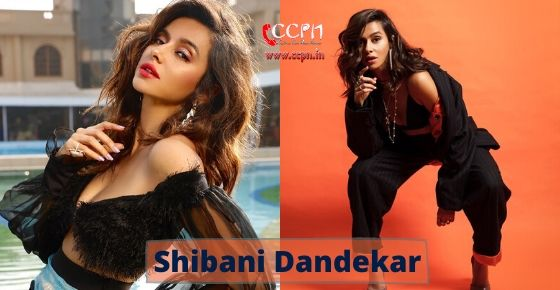 How to contact Shibani Dandekar?