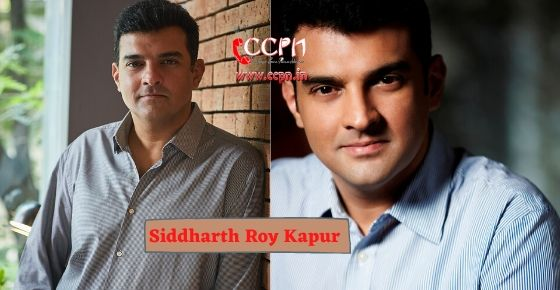 How to contact Siddharth Roy Kapur?