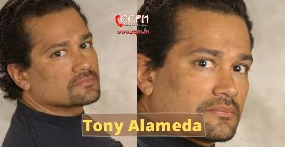 How to contact Tony Alameda?