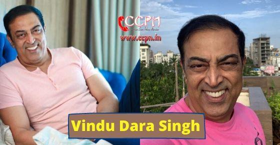 How to contact Vindu Dara Singh?