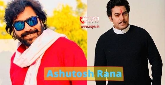 How to contact Ashutosh Rana?