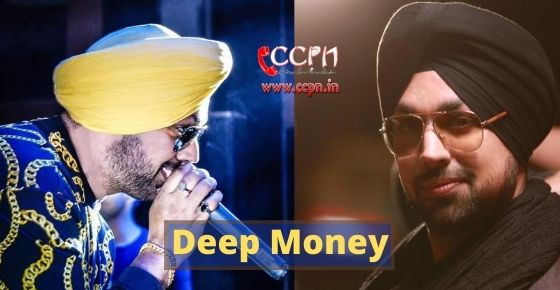 How to contact Deep Money?