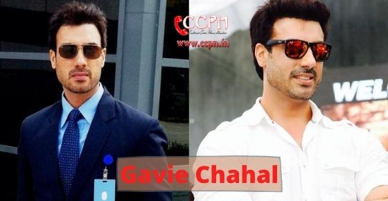 How to contact Gavie Chahal?