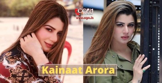 How to contact Kainaat Arora?