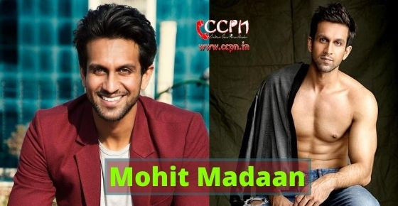 How to contact Mohit Madaan?