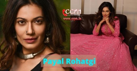 How to contact Payal Rohatgi?