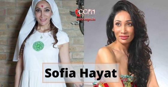 How to contact Sofia Hayat?