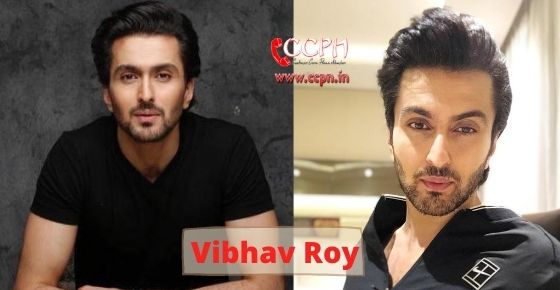How to contact Vibhav Roy?