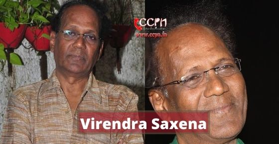 How to contact Virendra Saxena?