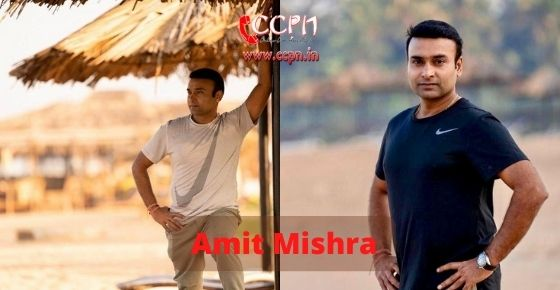 How to contact Amit Mishra