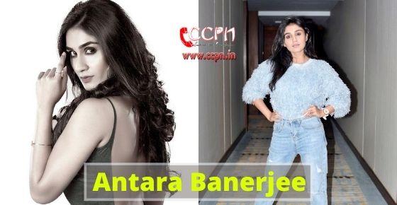 How to contact Antara Banerjee?
