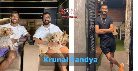 How to contact Krunal Pandya