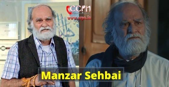 How to contact Manzar Sehbai?